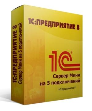 Купить 1С:Сервер Мини на 5 подключений в Пятигорске и на КМВ